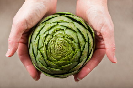 Artichoke Cradled in Hands